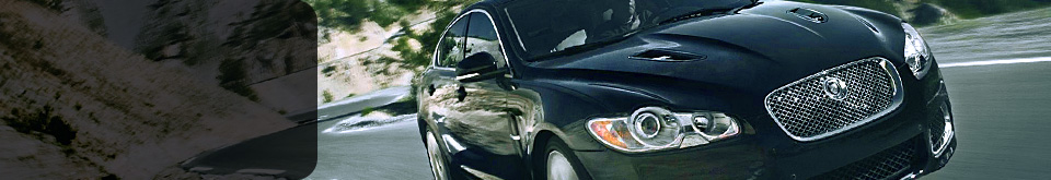 Automotive surface coatings